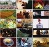 BBC: Разум человека / BBC: The Human Mind (2003)
