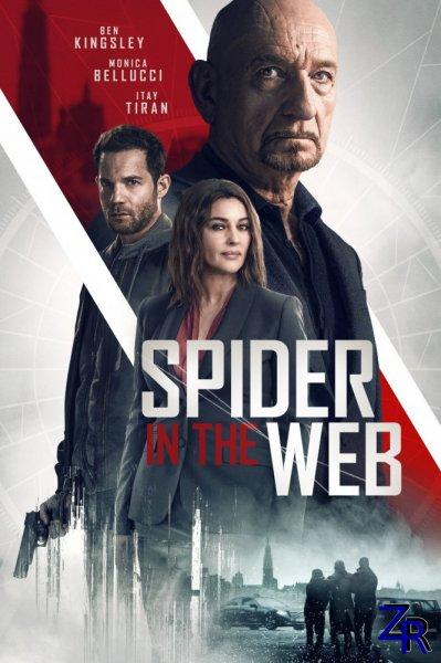 Старые шпионские игры / Spider in the Web (2019)